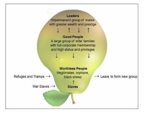 The curious inverted pear shaped social system of the Coast Salish groups.