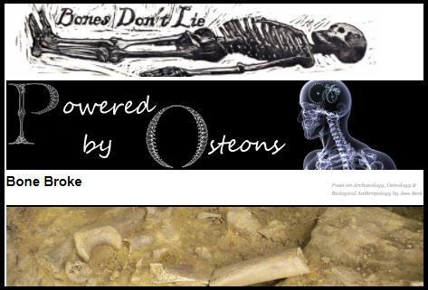 These bones of mine human osteology archaeology amongst other these bones of mine human osteology archaeology amongst other things fandeluxe Choice Image